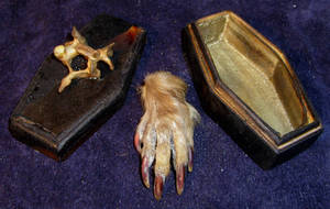 Mummified VooDoo Monkey Paw by DETHCHEEZ