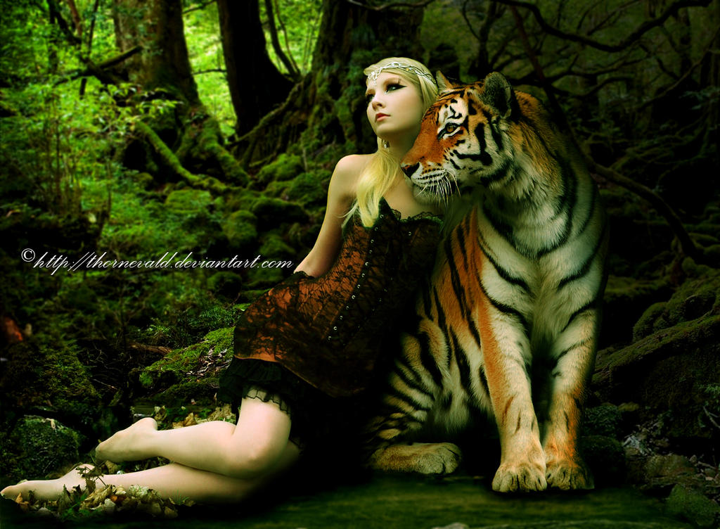 woman of the tiger by thornevald on deviantart