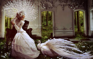 White queen and the Peacock by thornevald