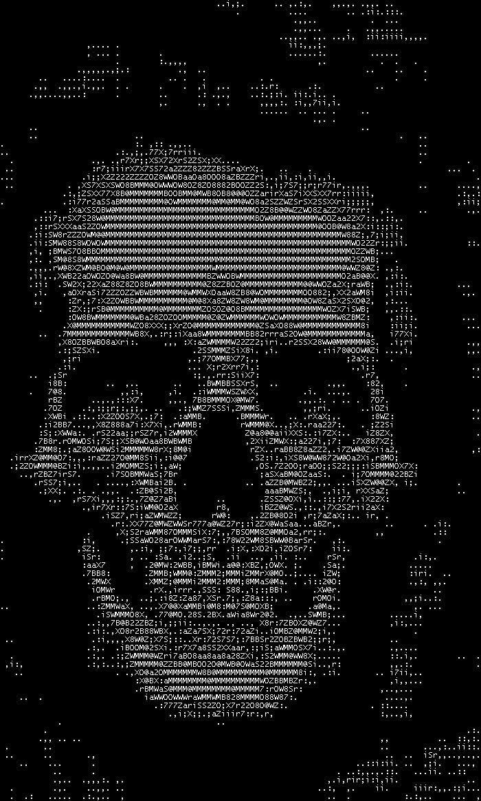 One Line Ascii Art For Texting : Skullascii by hamstx r on deviantart