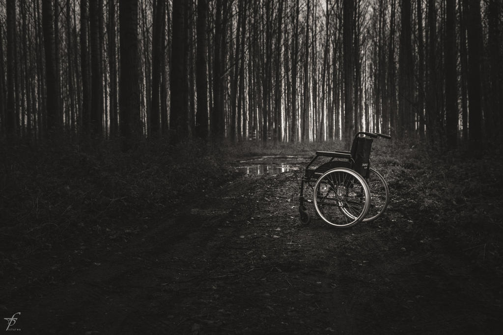 Lonely Wheelchair - The Last Outing 1 by ferobanjo