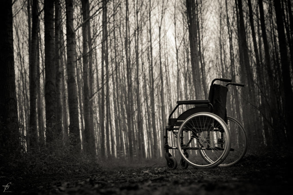 Lonely Wheelchair - The Last Outing 5 by ferobanjo