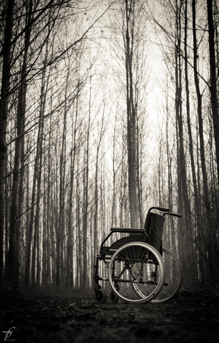 Lonely Wheelchair - The Last Outing 7 by ferobanjo