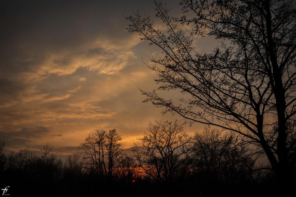 Late Spring Evening 05 by ferobanjo