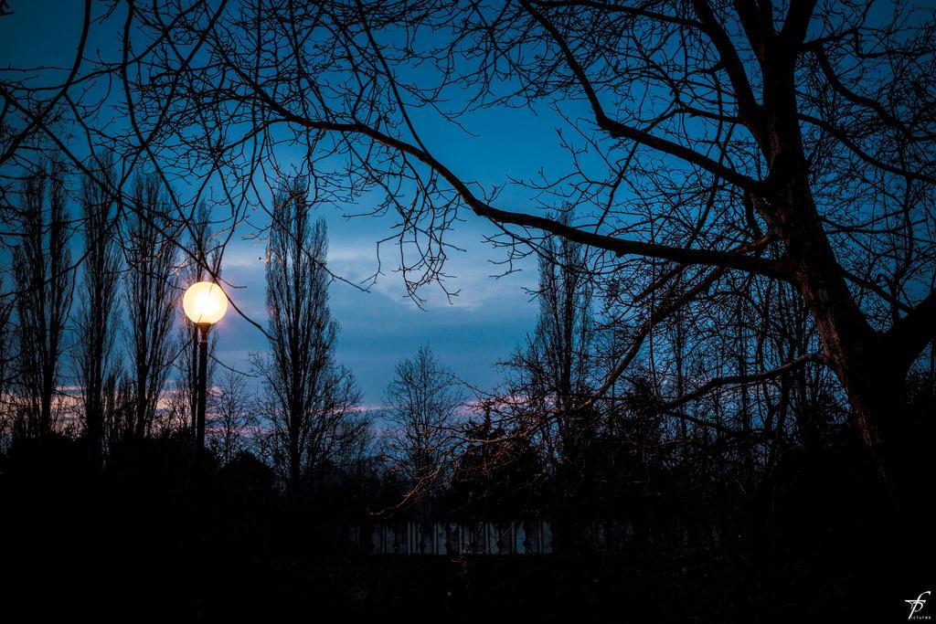 Late Spring Evening 06 by ferobanjo