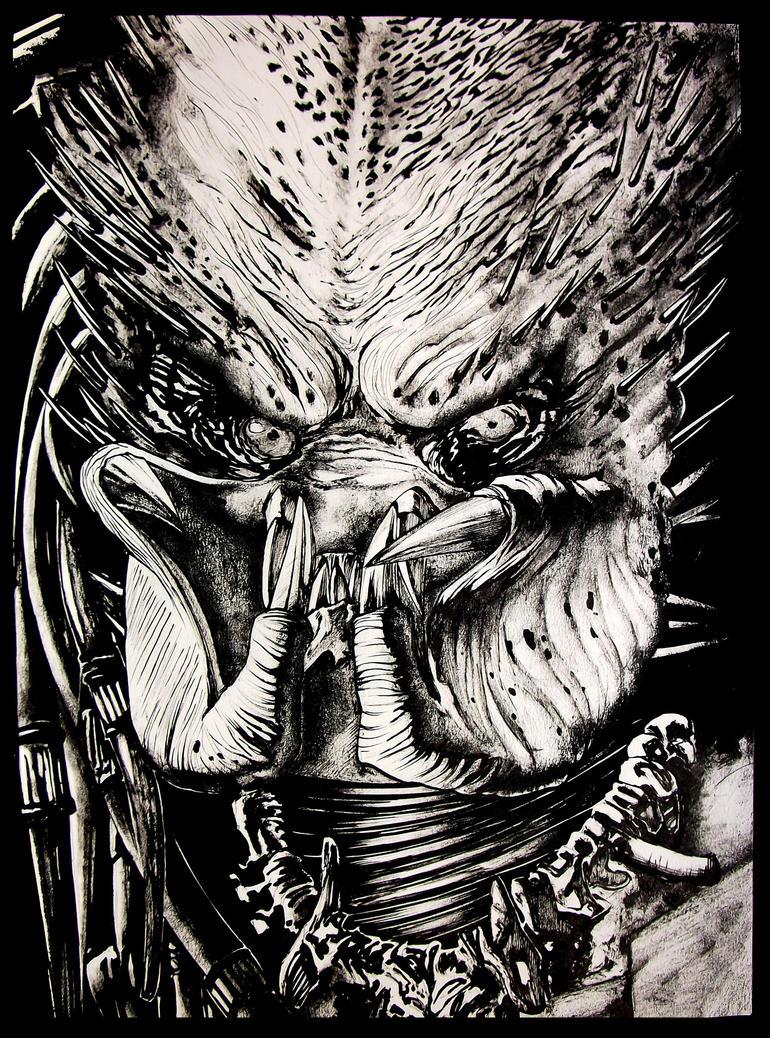 predator - by ashasylum