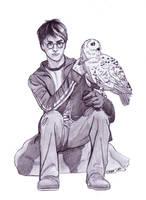 Harry ed Hedwige by Elezar81
