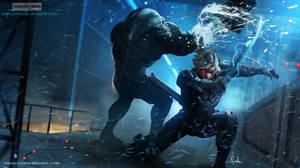 Raiden Metal Gear Rising : Revengeance 03