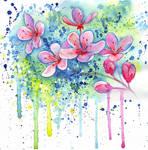 1220 Cherry Blossom