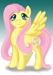 Fluttershy, Once Again