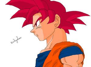 Goku - Super Saiyan God Colo