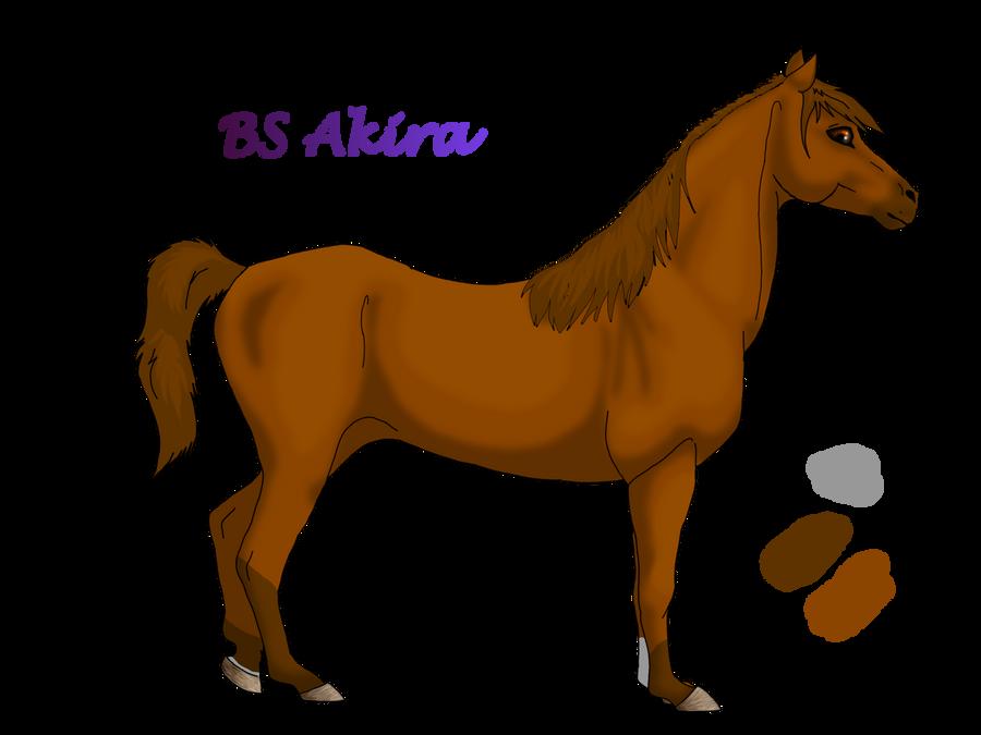 BS Akira Bs_akira_by_tatiilange-d3fvl8l