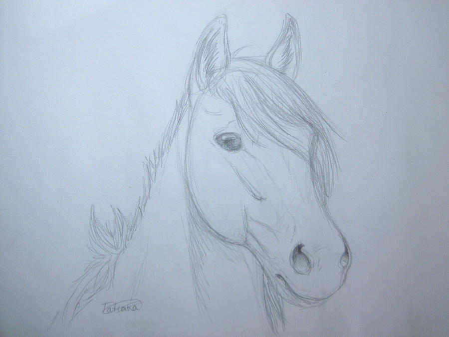 Horse Practices -OLD- Horse_sketch_practice__by_tatiilange-d3id53n