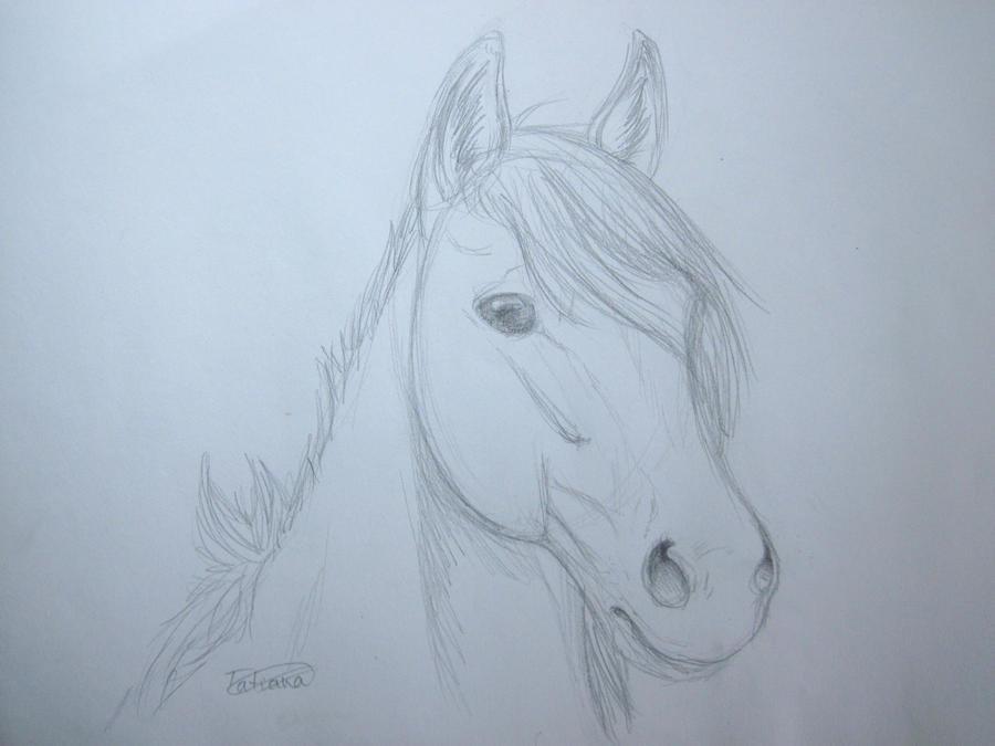 tatii Admin´s Art Horse_sketch_practice__by_tatiilange-d3id53n