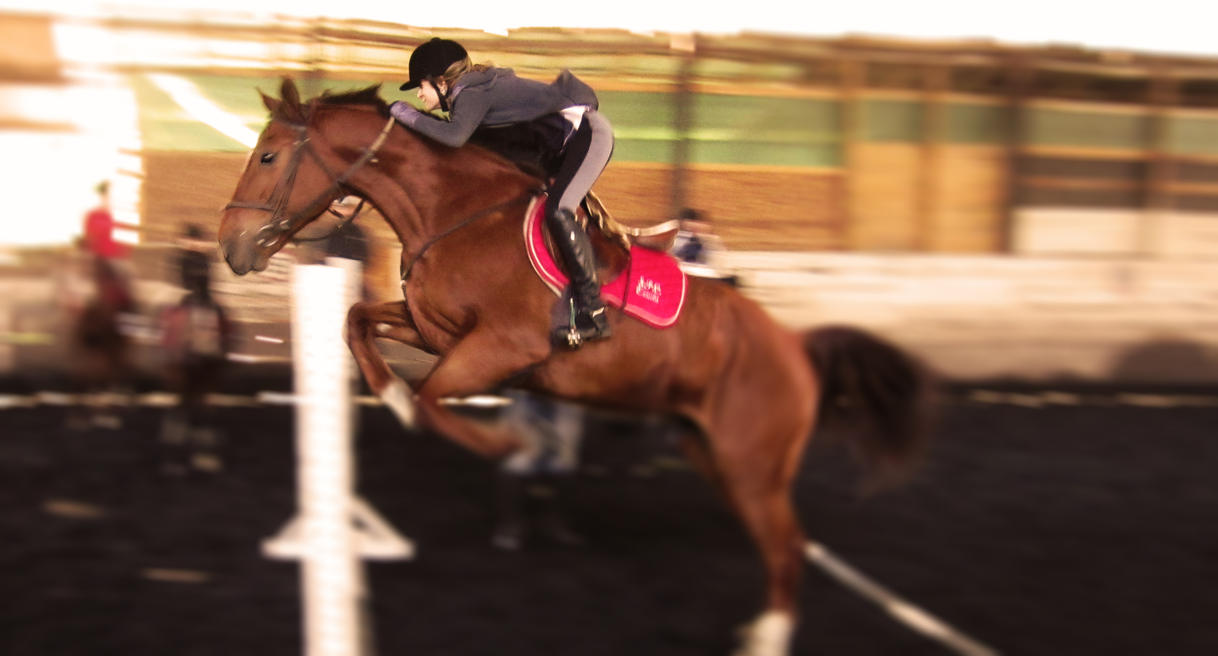 Horse Jumping Lets_go_higher___by_tatiilange-d5acwy9