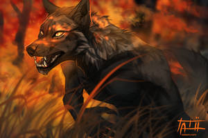 The Hunt by tatiilange