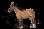 Premade-Precut horse!