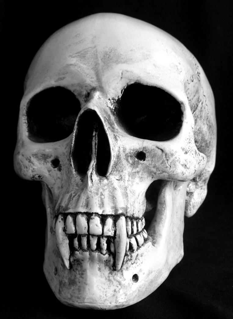 It is an image of Mesmerizing Vampire Skull Drawing
