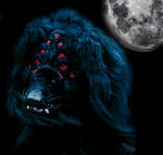 The Night Prowler by ThoronWild