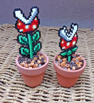 Piranha Pot Plants