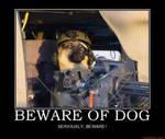 Beware-of-dog
