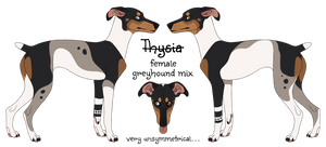 Thysia Reference Update
