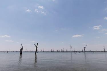 Lake Mulwala by Lindalees