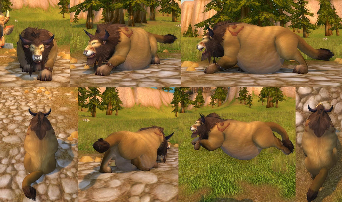 Druid Tauren cat form fat World of Warcraft by coldsteelj