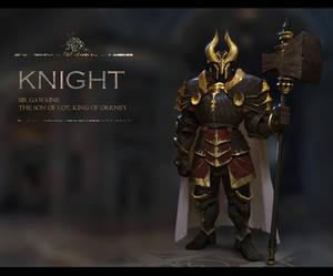 A knight design _male
