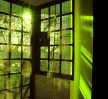 Green Window by MatiasPage