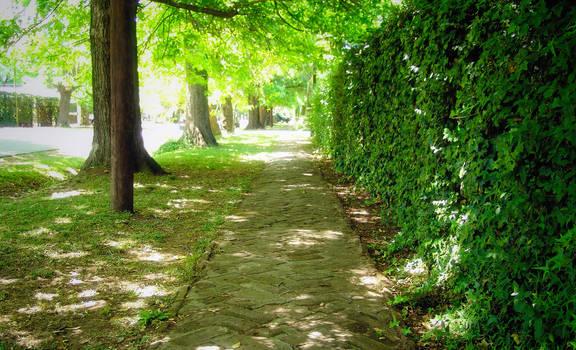 Wonderful Sidewalk