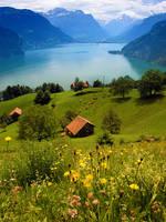 Swiss Farm on Lake Lucern