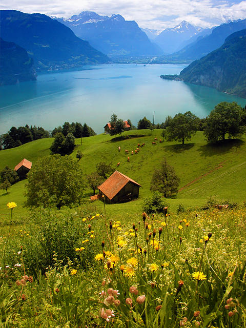 Swiss Farm on Lake Lucern by snak