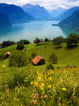 Swiss Farm on Lake Lucern