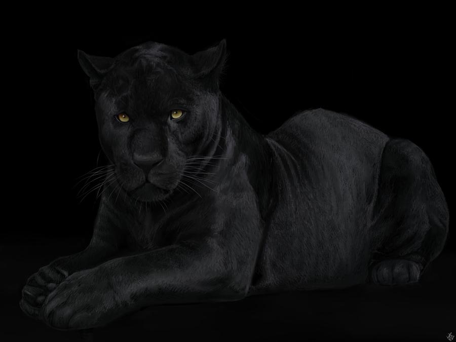 Black Panther By Portela On Deviantart: The Black Panther. By Alexandoria On DeviantArt