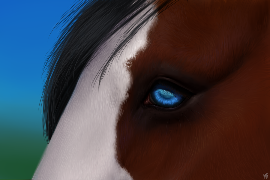 Blue eyes by Alexandoria