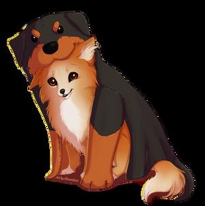 Vaks The Rottweiler