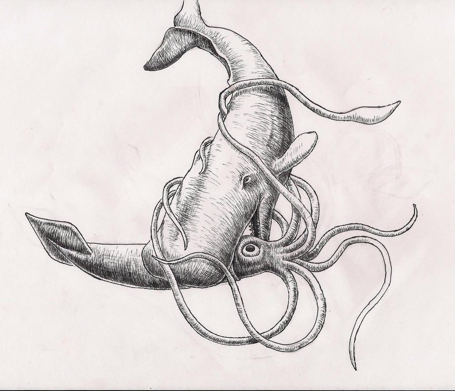 Whale vs Squid sketch ...