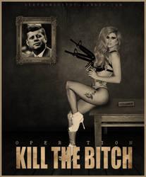 OPERATION: KILL THE BITCH by stefangrujicic