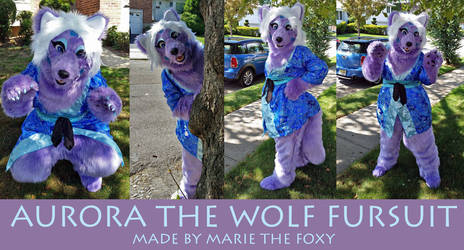 Aurora the Wolf Fursuit COMPLETE by PudgeyRedFox