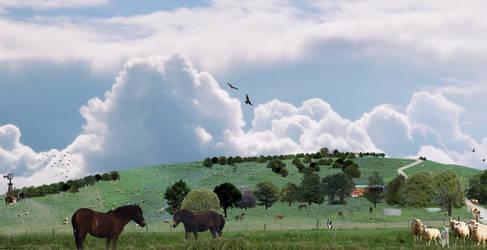Farm Hill View#
