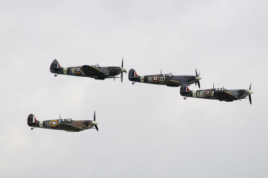 Spitfires by james147741