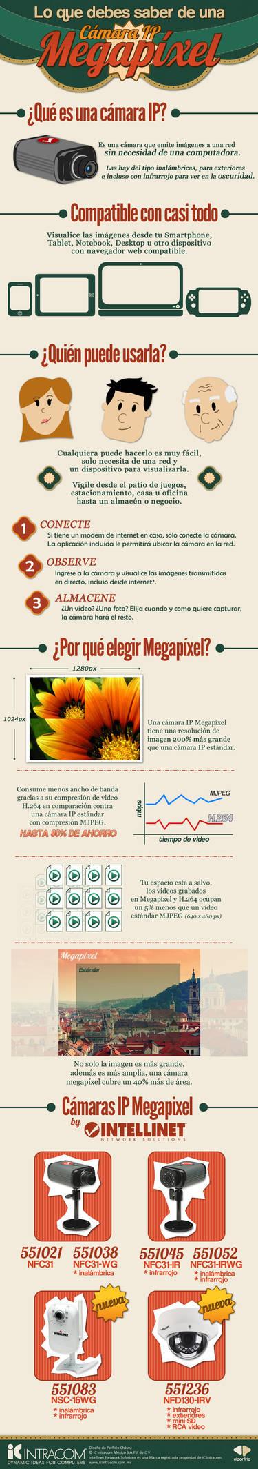 Infografia Camaras IP Megapixel