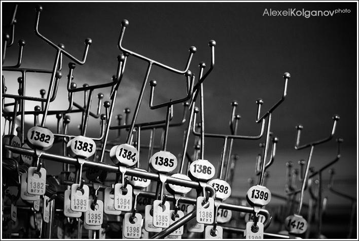 Numbers'n'horns