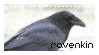 ravenkin stamp by sat5uki