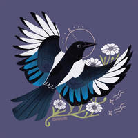 Eurasian Magpie by reimena