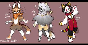 Maskcatz Adopt Batch (sold)
