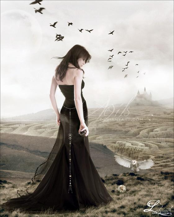 Labyrinth by Aegils