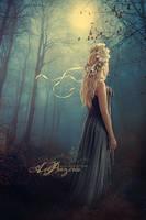 Light Up The Sky by Aegils