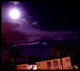 Moon Lit Walk